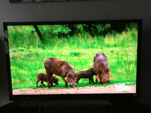 """Sony Bravia 46"""" TV with stand"""