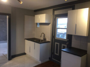 3 1/2 NEWLY RENOVATED APARTMENT FOR RENT near port montreal