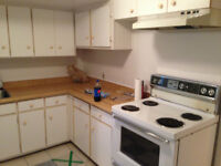 31/2 Spacious Semi Basement for rent in West Island