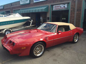 1981 Pontiac Trans Am rare Convertible