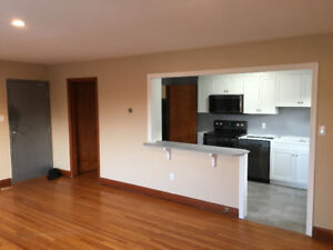 Renovated 2 Bdrm + Den Spacious Apartment
