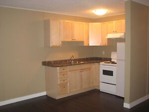 Downtown Bachelor Apartment for rent