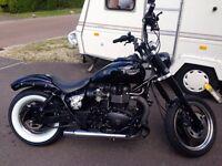 Triumph speedmaster custom bobber
