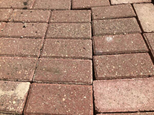 Sold pending pickup Red holland brick pavers, patio stones.