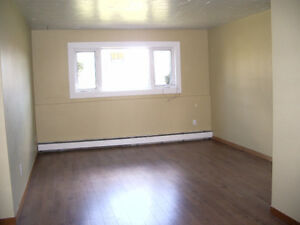 Heated 2 bedroom apt - available August 1st