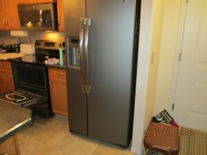 Matching Slate Fridge and Range