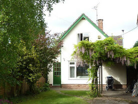Large ground-floor room to rent in Monmouth, 10 mins from town centre. Off-road parking.