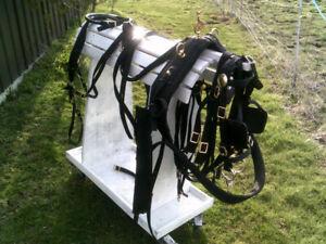 HORSE/ Lt DRAFT NYLON HARNESS