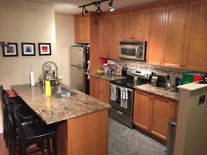 Furnished 2 Bd w/ Parking, Laundry, Fireplace, BBQ & More
