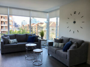 New 2 bedroom, 2 bath furnished condo in downtown Victoria