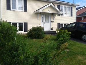 West End/Central St. John's - New One Bedroom Spacious Apartment St. John's Newfoundland image 1