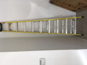 10' Industrial Ladder