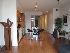 Contemporary Yaletown loft - available early Sep