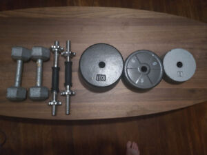 Set of weights, ajustable dumbbells and fixed 10lb dumbbells