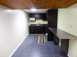 1 bed in basement suite for rent for Oct 1st near northgate mall