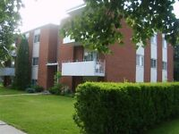137 Lorraine Ave, Kit- 2 Bedroom  Apt-close to Stanley Park Mall