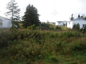Land for Sale in Catalina with water vew St. John's Newfoundland image 2