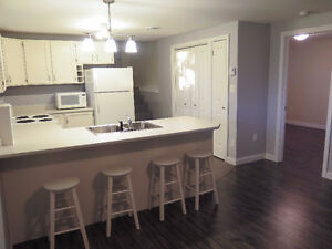 $850pcm- 1 bed basement apt- avail Aug 1st-10min from downtown
