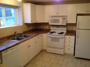 Central Glenmore 2 BDRM suite - Available to move in on Feb 1