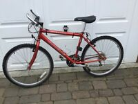 Men's Emmelle red Cheetah mountain bike