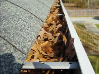 Gutters/Eaves Cleaning.