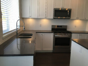 FOR RENT BRAND NEW FOUR BEDROOM TOWNHOUSE SOUTH SURREY