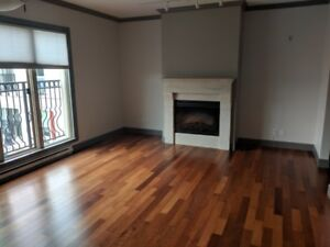 Spacious Bright 2 bedroom Apartment for Rent