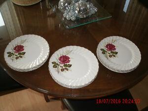 12 NEW almost 50 yr Myott ANNIVERSARY ROSE Dinner Plates