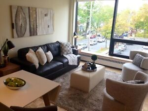 Available Dec. 1st - Renovated One Bedroom Walk to Universities
