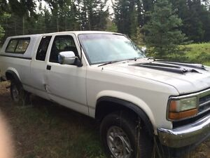 Dodge Dakotas for sale