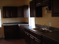 Large Renovated 3 Bedroom House on West Side