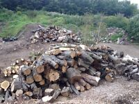 Cheap mixed firewood timber for sale