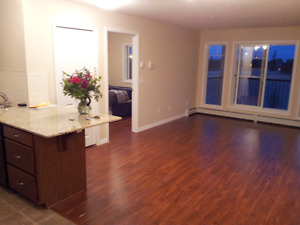 Centrally located 2 Bedroom 2 bath condo with 2 parking stalls