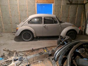 74' super beetle project