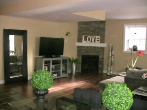 All inclusive lower level house
