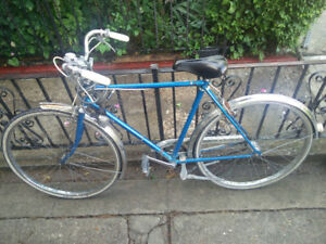 Vintage Blue Supercycle