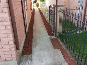 Lawncare and grass cutting London Ontario image 7