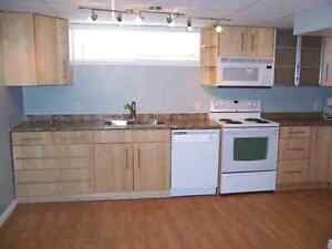 1 bedroom 750$ a month,  newly renovated, washer/dryer
