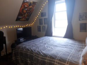 Summer Sublet available immediately! 1 Room in a 4-Bedroom Unit