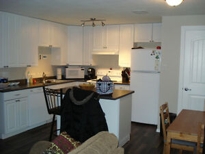 Bright and Spacious Basement Suite in Martensville