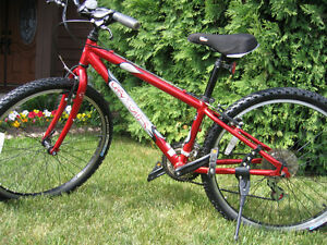 Gary Fisher Mountain Bike For Sale