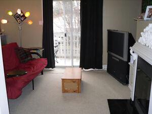 Chaleureux 1 chambre avec foyer à Gatineau