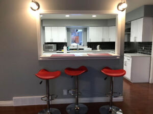 Bright Renovated Furnished 4 Bedrooms (utilities inclu.)