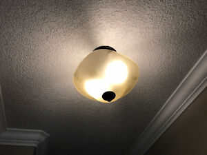 2 dropped ceiling light fixtures