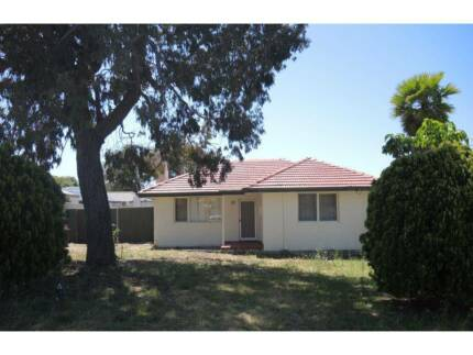 3 Bed renovated home with large rear yard and shed