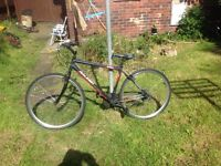 Raleigh gear bike for sale (adult)