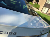 lip spoiler class C mercedes benz white pint  for C250 C300 C350