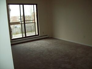 St Thomas 2 bedroom apartment for rent