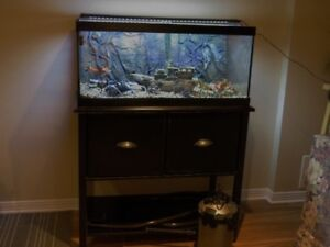 40 Gallon fish tank and stand