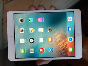 iPad Mini For Sale Mint Condition With Case